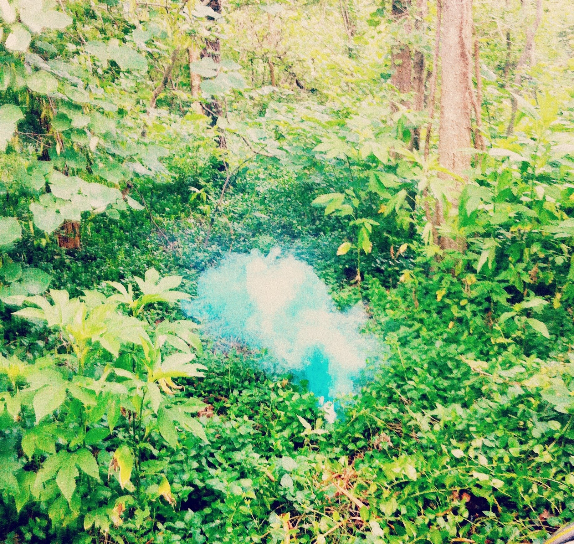 Smoke Bomb DIY