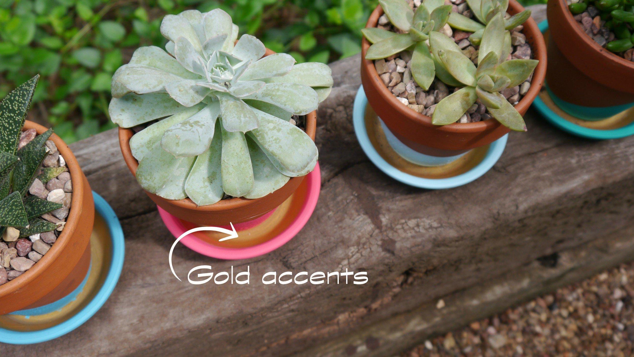 Paint Dipped terra cotta pots