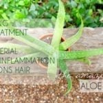 The Amazing Aloe Vera Gel