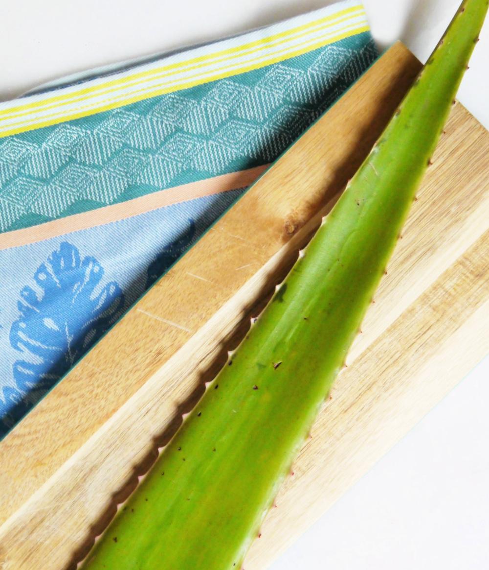 Aloe Vera Skin Benefits and Uses