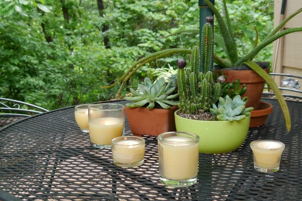 citronella candles 3