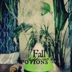 Fall Diffuser Potions…