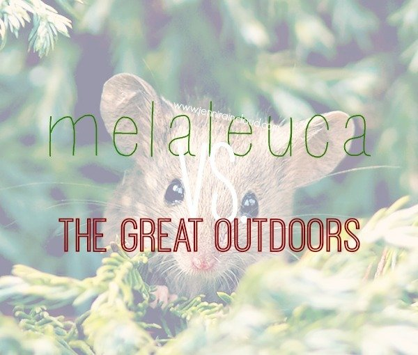 A Natural Protocol for Bites with Melaleuca