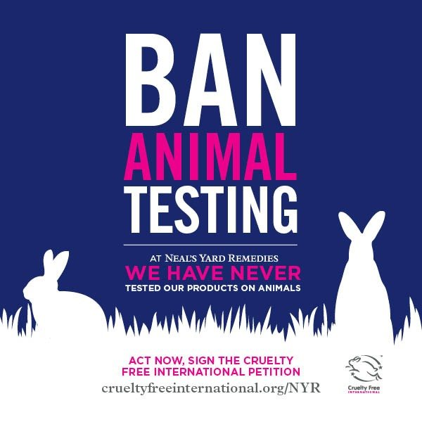 YOU can Help STOP Animal Testing in the U.S.!