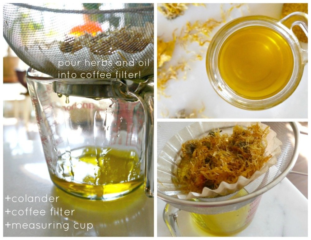 Infusing Calendula Oil