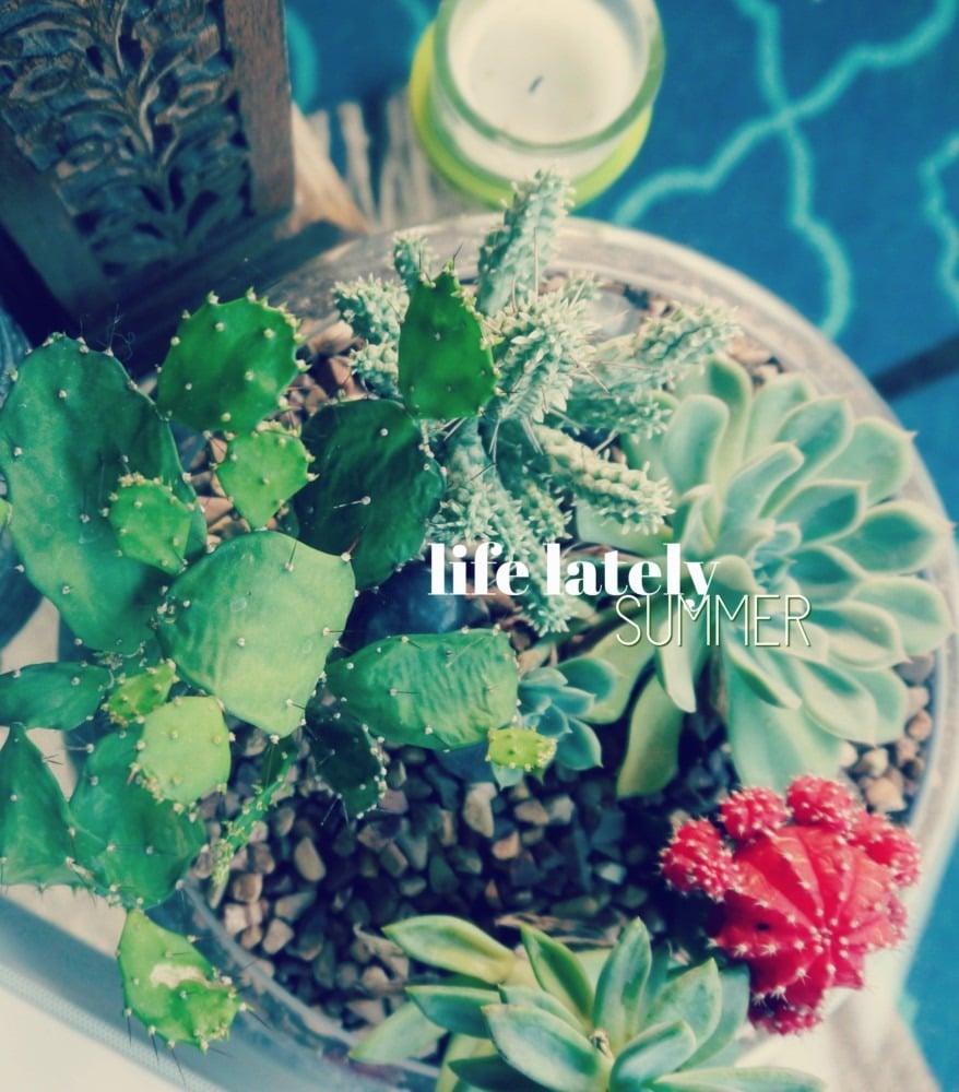 Life Lately 2017