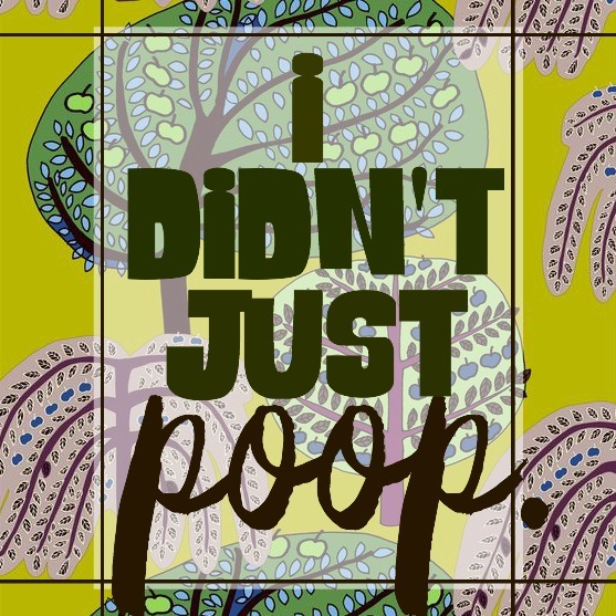 DIY Poo-Pourri