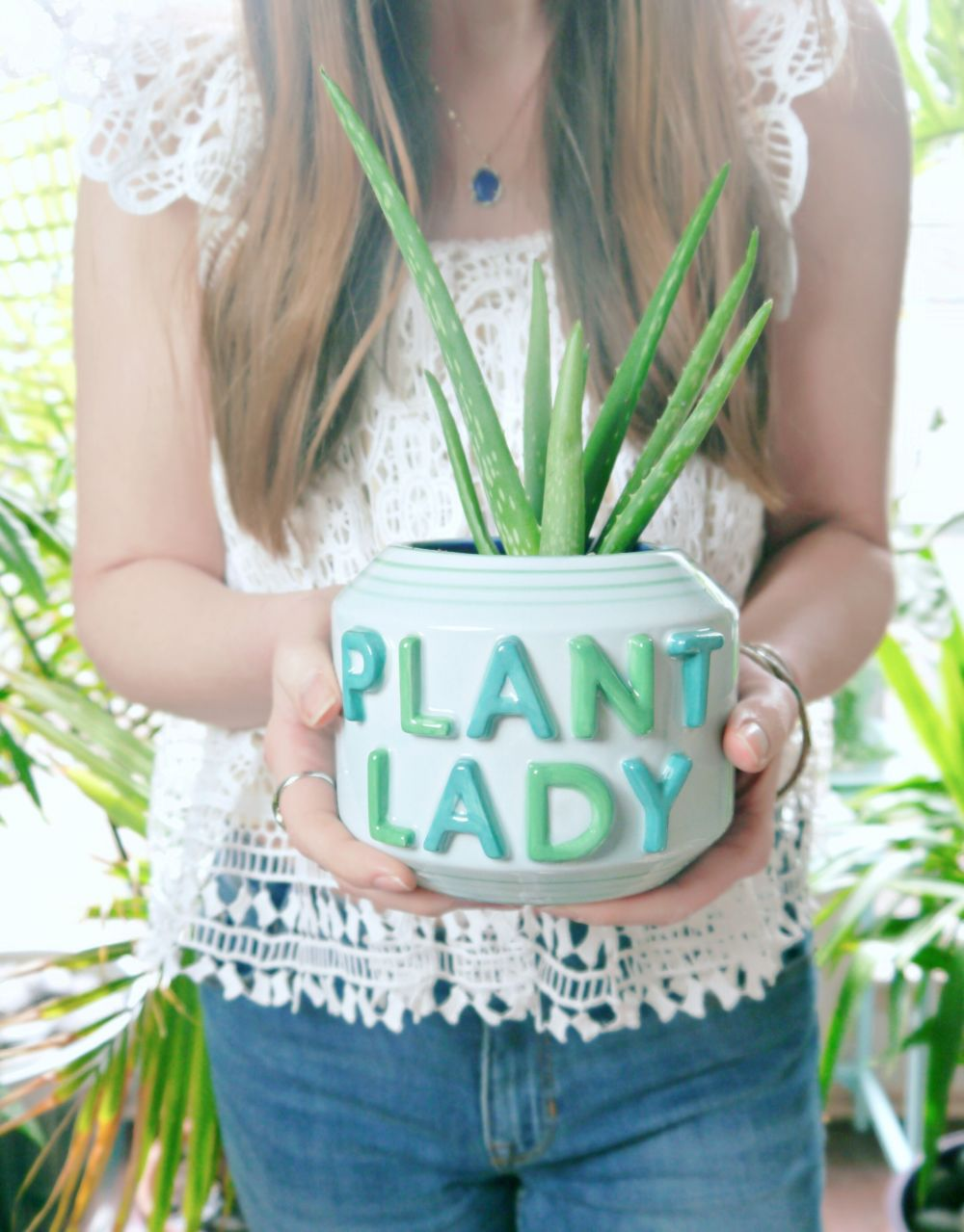 Improve Air Quality with Plants