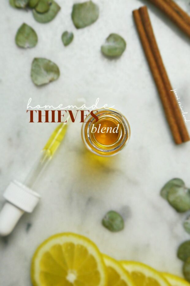 DIY Thieves