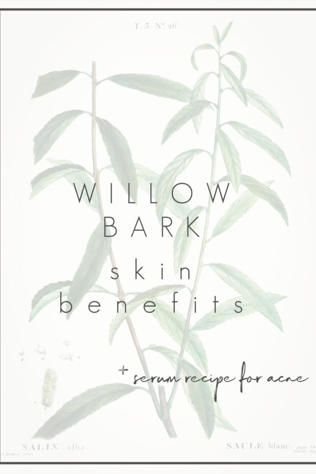 Willow Back for Skin